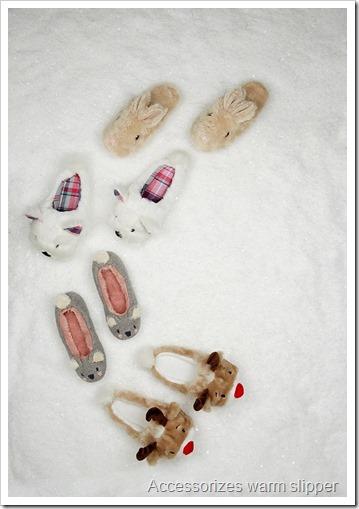 accessorizes slipper